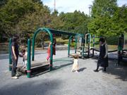 20071020_park