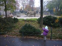 20071104_zoo1_5