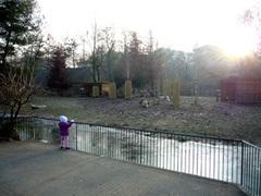 20071219_zoo1