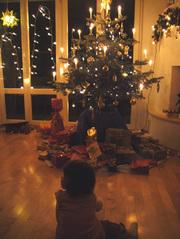 20071225_xmas_tree_2