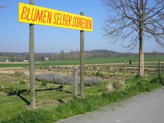 20070406_blumen
