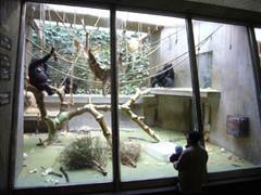 20080121_zoo