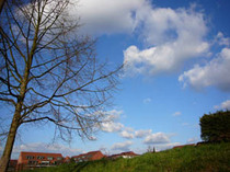 20080318_spaziergang