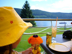 20080628_titisee3