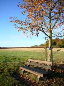 20081017_bench