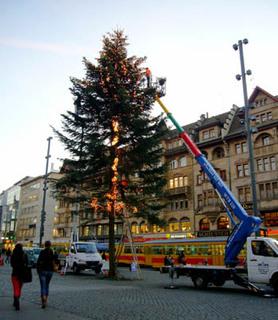 20081115_weihnachtsbaum