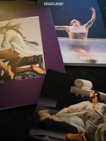 20081122_traviata
