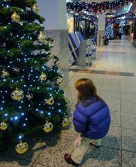 1_weihnachtsbaum_2