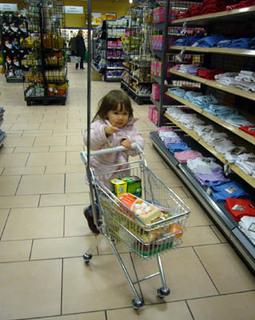 20090312_shopping