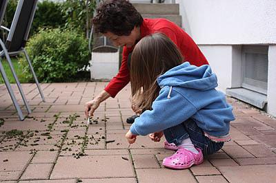 20100902_garden