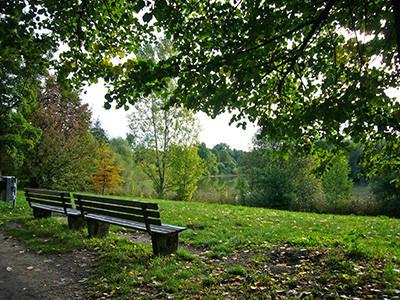 Marienbergpark_1