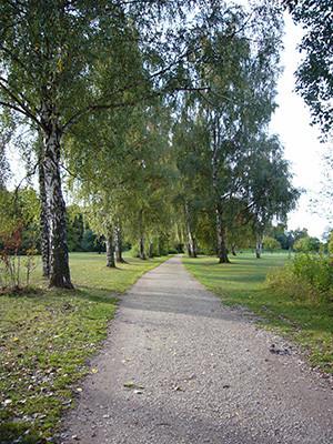 Marienbergpark_4