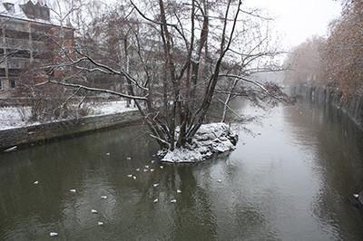 Winter_4_2